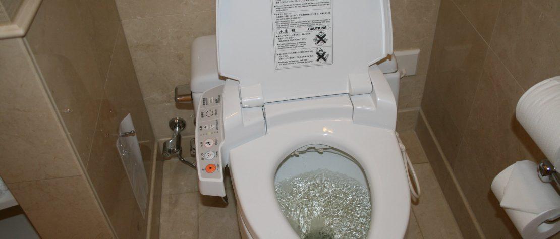 Tout savoir sur les WC Japonais !