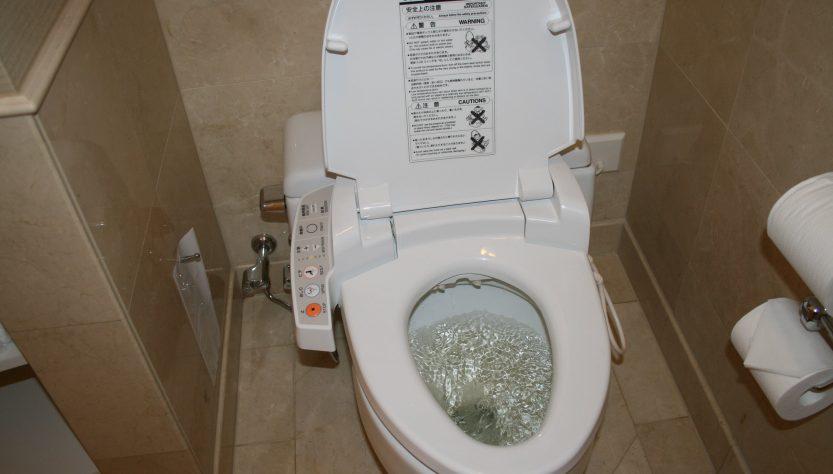 toillettes wc jponaises